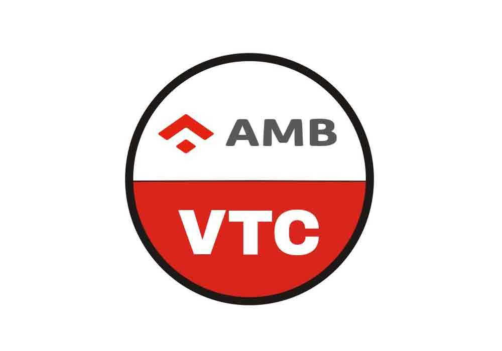 Entrada en vigor de los artículos no suspendidos del AMB