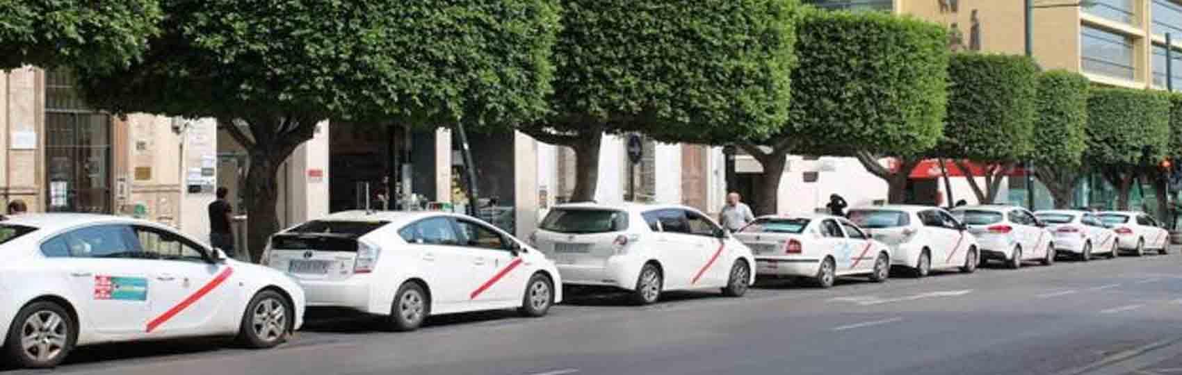 Noticias del sector del taxi y la movilidad en Almería. Mantente informado de todas las noticias del taxi de Almería en el grupo de Facebook de Todo Taxi.