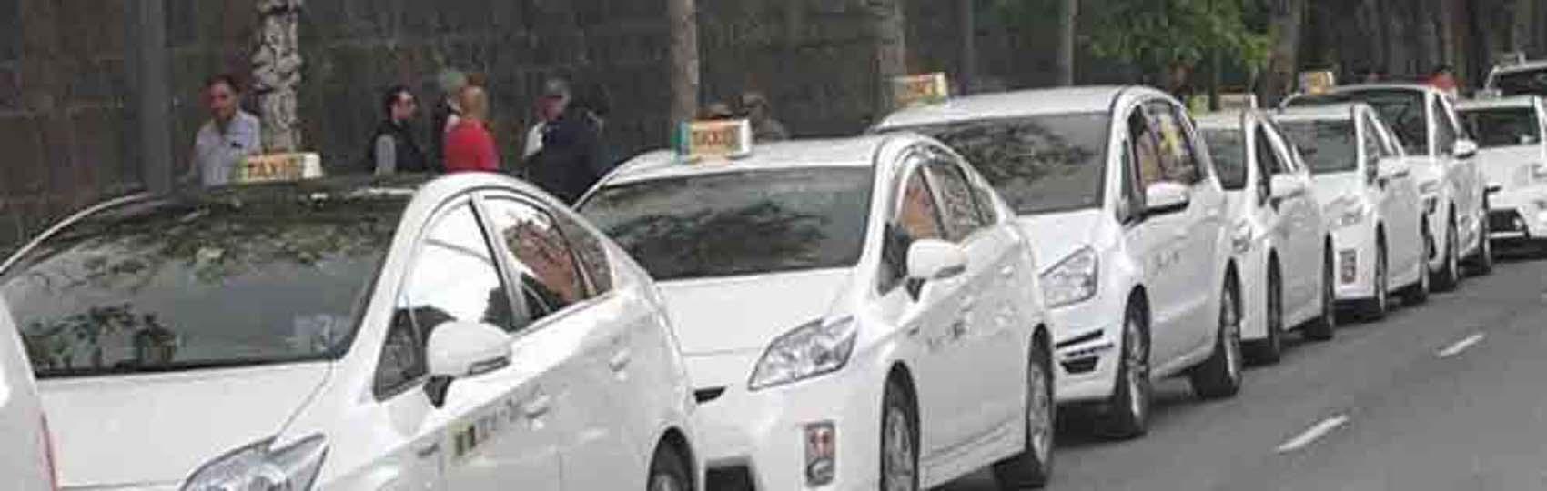 Noticias del sector del taxi y la movilidad en Pamplona. Mantente informado de todas las noticias del taxi de Pamplona en el grupo de Facebook de Todo Taxi.
