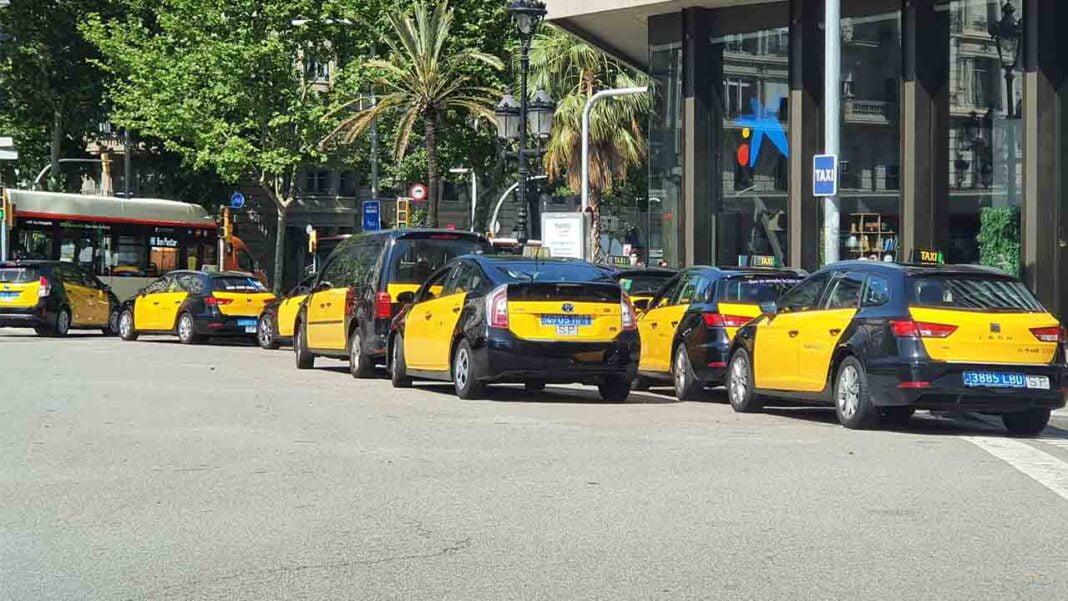 El IMET lanzará una campaña de comunicación para fomentar el taxi