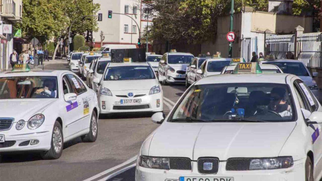 Sin consenso en el sector del taxi en Valladolid para la reducción de la flota